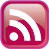 RSS posts feed icon